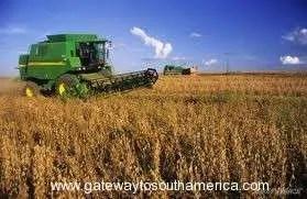 Direct Farming