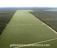 farm-paraguay