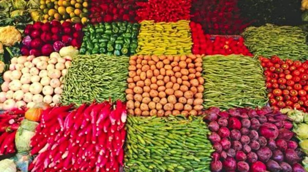 image of the article Agricultores Orgánicos en Argentina