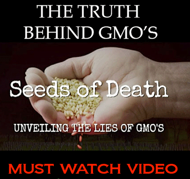 seeds of death unveiling the lies of gmo essay Seeds of change – gmos in western canada: 77 minute movie seeds of death – unveiling the lies of gmos: 1:20 minute free documentary seeds of freedom – corporate takeover of seeds: 30 minute movie.