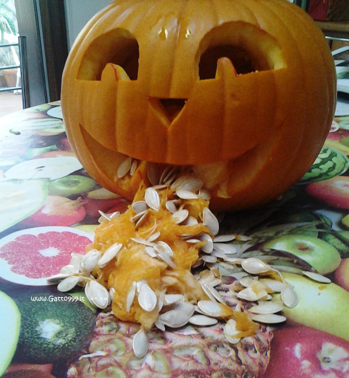 Cat Come Fare Una Zucca Di Halloween