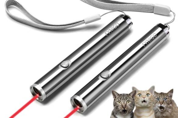 Laser per gatti-foto