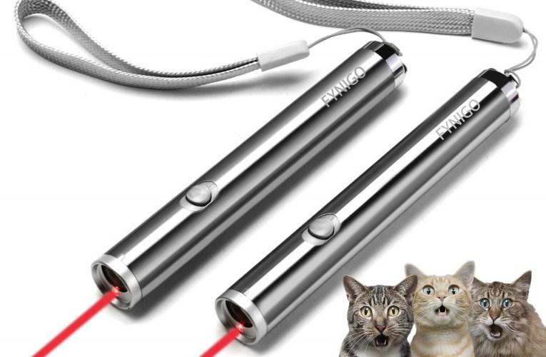 I puntatori laser per gatti sono effettivamente buoni come giocattoli?