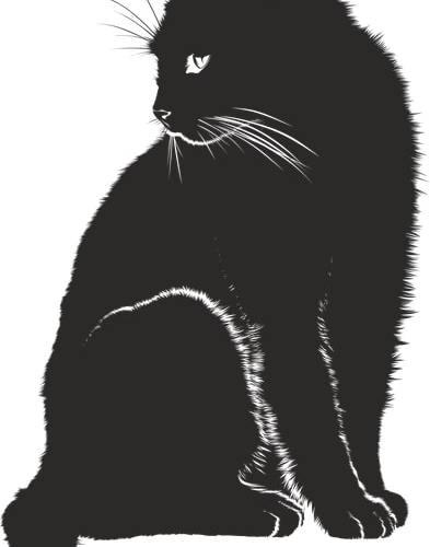 Anatomia dei muscoli del gatto: Guida base