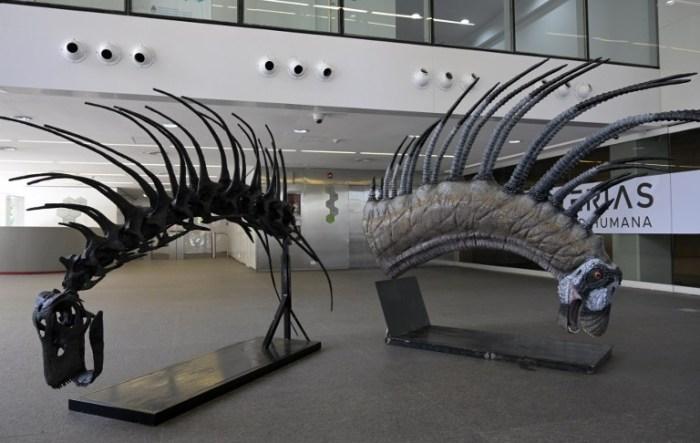 argentina dinosauro Bajadasaurus pronuspinax