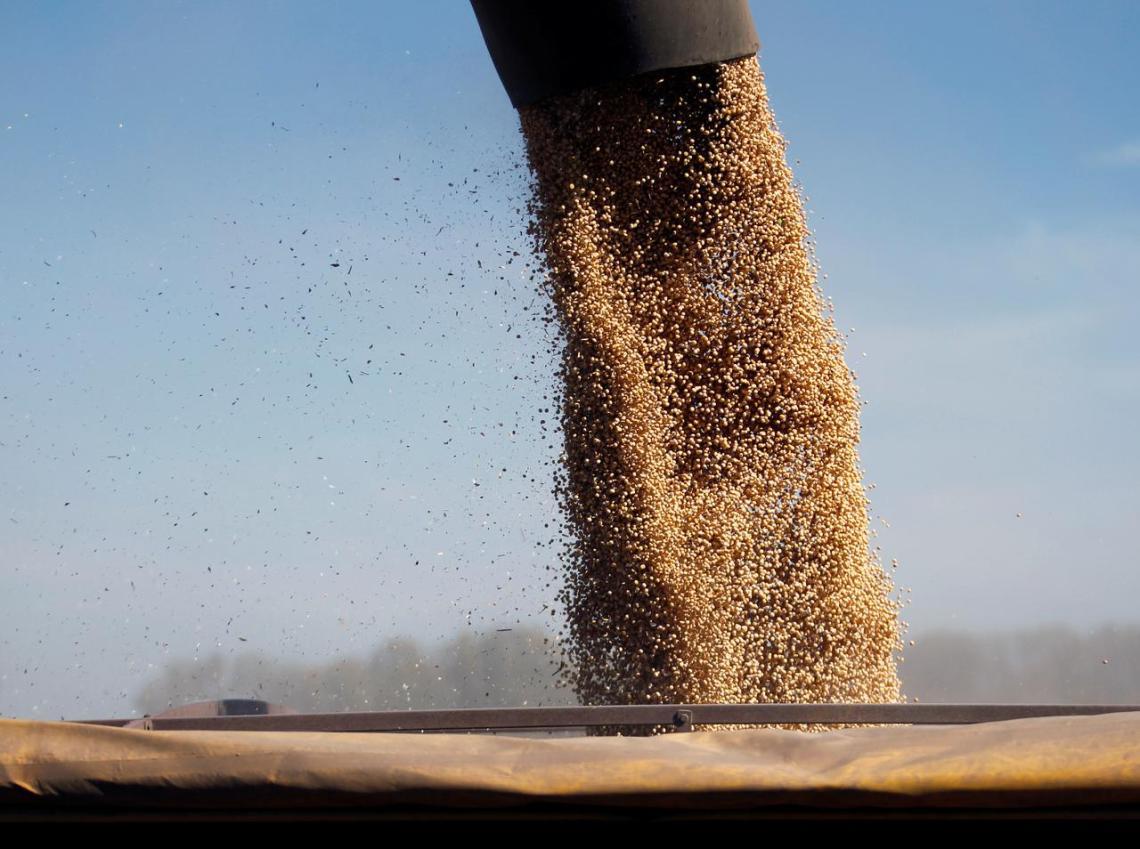 argentina aumento dazi esportazioni soia grano agricoli