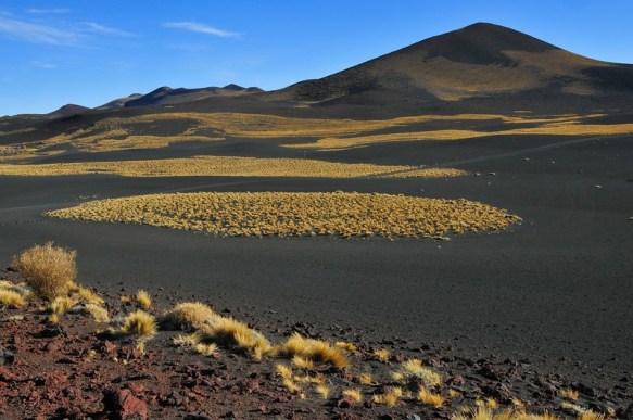 riserva la payunia mendoza deserto nero argentina