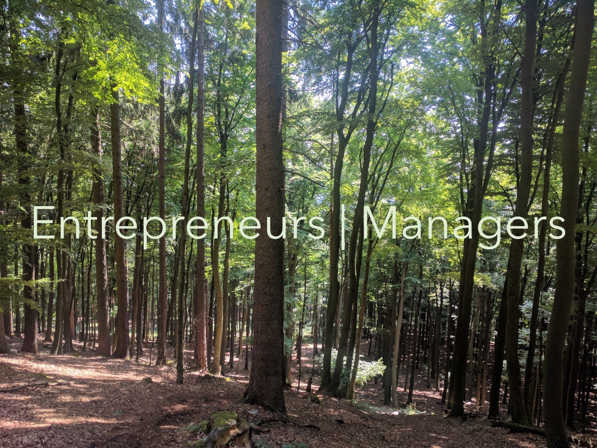 Entrepreneur vs Manager