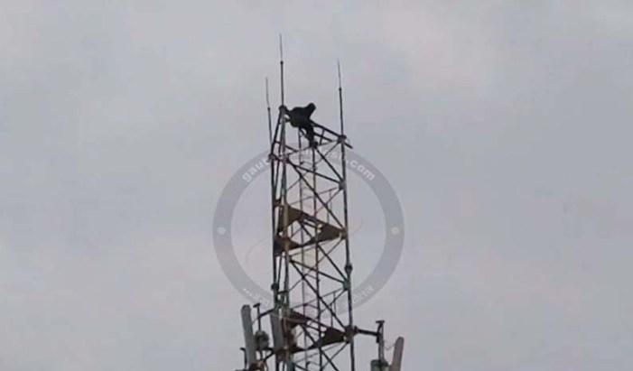 जमीन से दबंगों का अवैध कब्जा न हटने पर मोबाइल टॉवर पर चढ़ गया पीड़ित