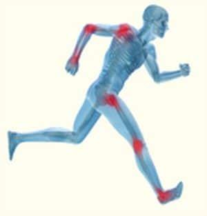 פיברומיאלגיה וסיבי העצב הדקים