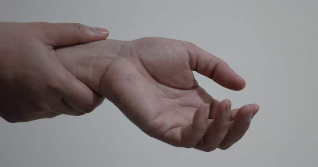 מבנה כף היד אנטומיה ותנועה