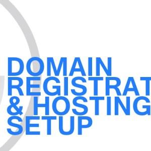 Gavin Consulting - Domain Registration and Hosting Setup