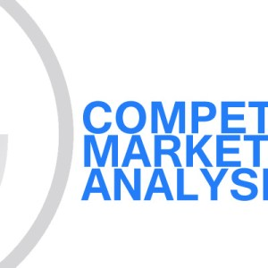 Gavin Consulting - Competitive Market Analysis