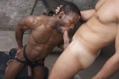 black gay suce malik tn l'arabe tbm 00003