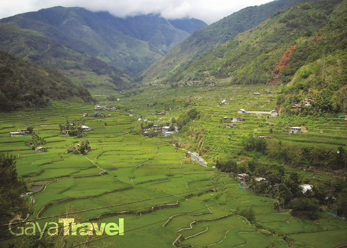 Ifugao Rice Terraces have been certified as a UNESCO World Heritage Site