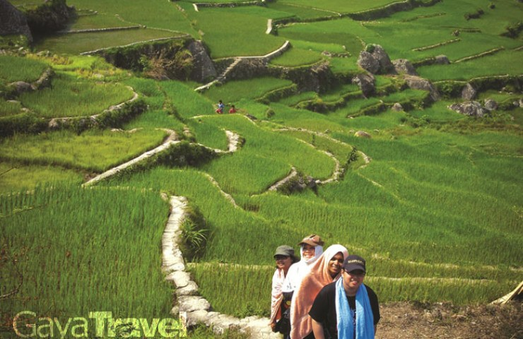 Trekking through the rice terraces