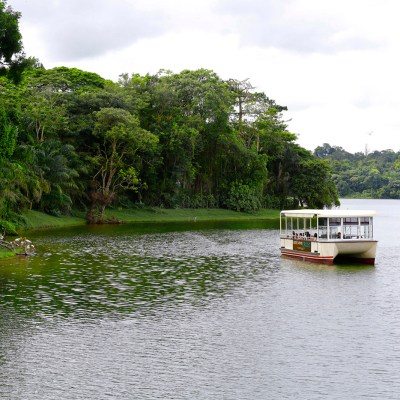 River Safari Cruise - The 15-minute cruise through the scenic Upper Seletar Reservoir is known as one of Singapore's largest water catchment areas.