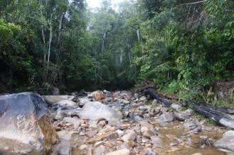 Rebata River during the dry season.