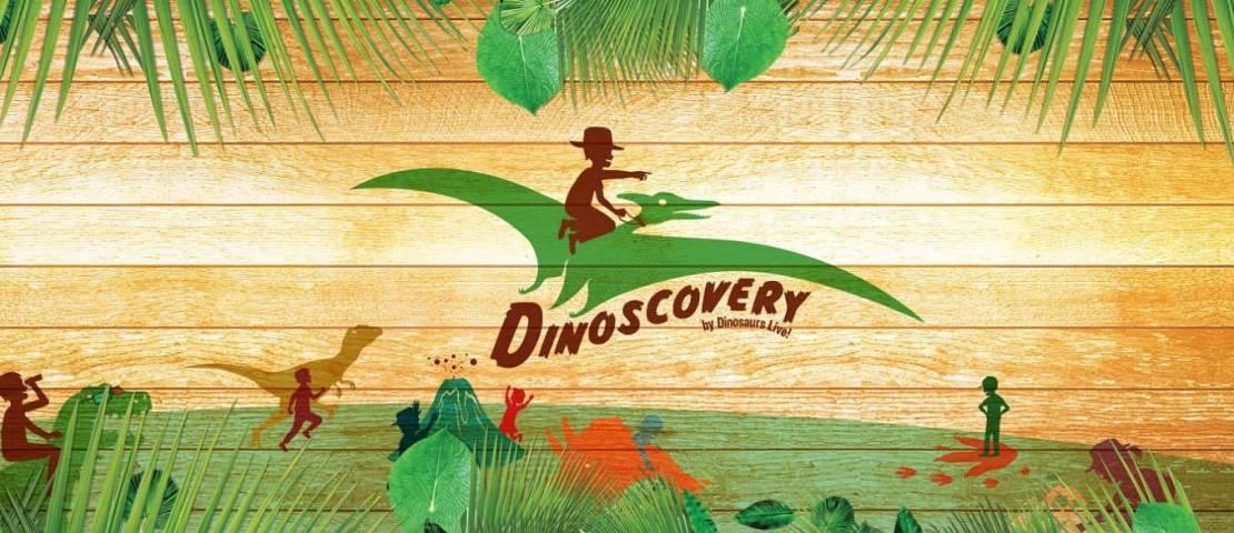 Dinoscovery: A Place for Budding Palaeontologists