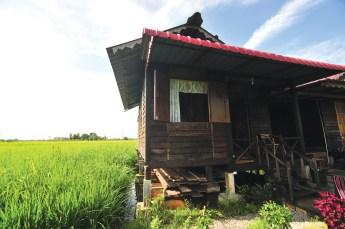 Homestay Sg Haji Dorani