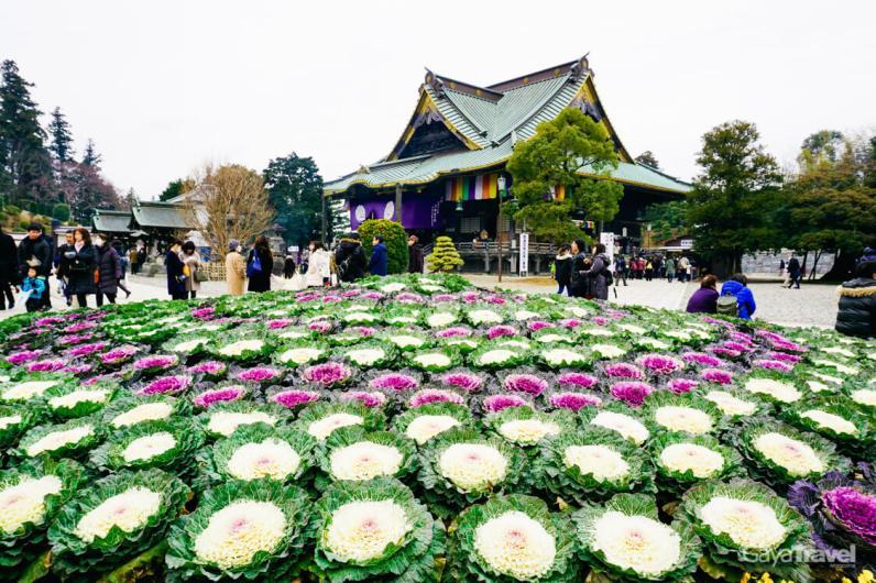 Narita-san Shinshoji Temple - 2-2