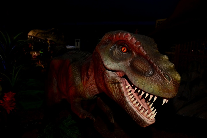 Dinosaur Alive