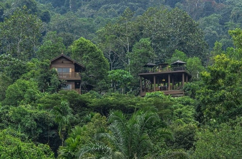 Image source: Templer Park Rainforest Retreat's Facebook page