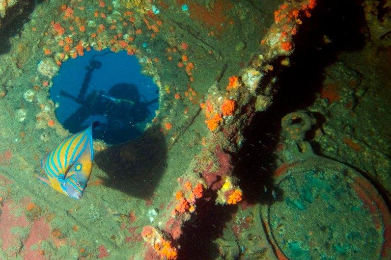 Wreck diving Kuching