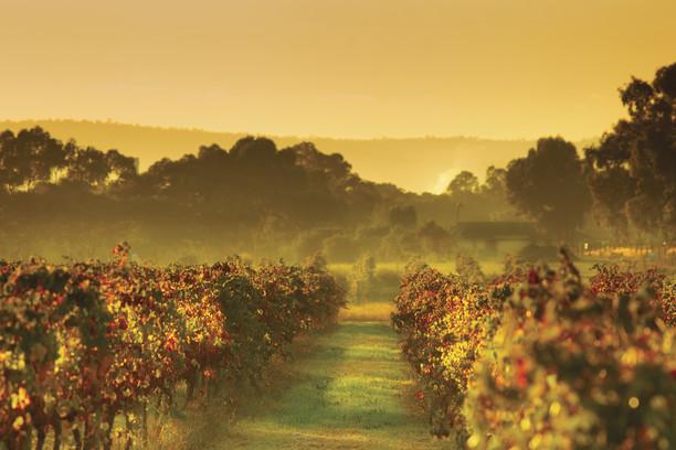 Experience the Subtle Magic of Autumn in Western Australia