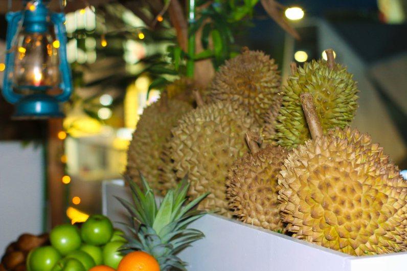 Makan Sampai Kenyang Durian Buffet