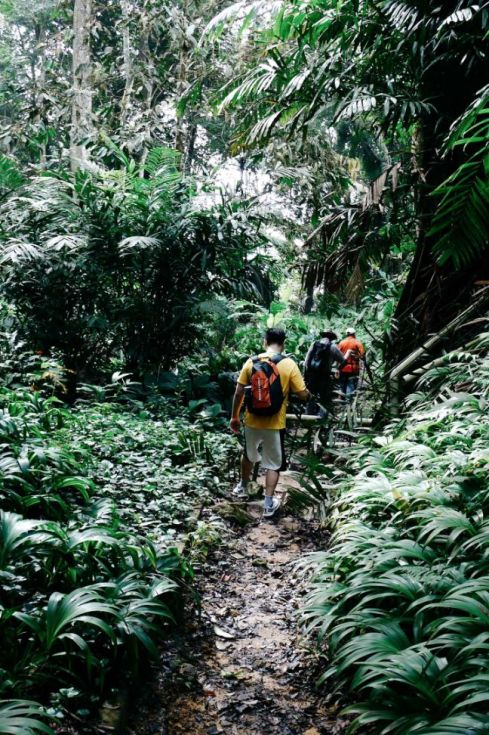 Off the beaten trek: Airbnb's best hiking destinations in Asia Pacific