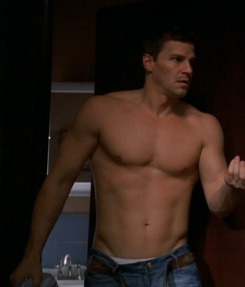 David Boreanaz naked (6)