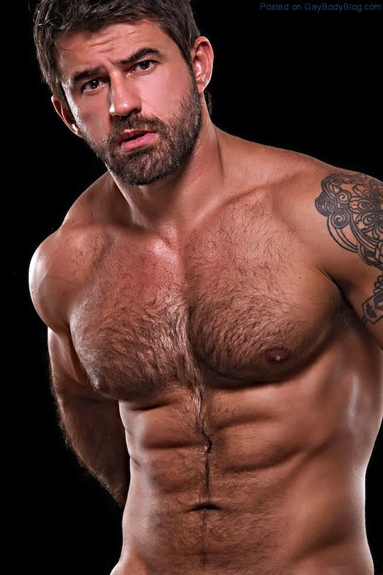 Masculine And Hairy Hunk Fabricio Ternes (3)