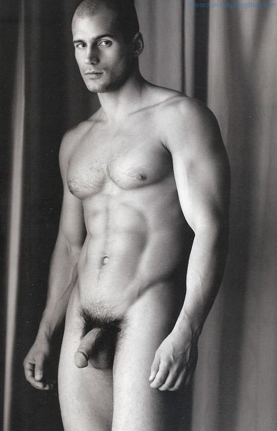 Frontal todd nude sanfield