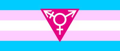 bandera_trans