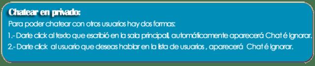 chat_instrucciones_privado