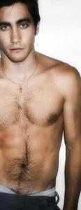 jake gyllenhaal gay porn free milf wife porn