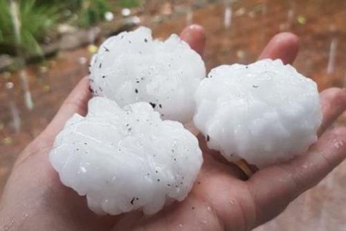 Sydney Hail