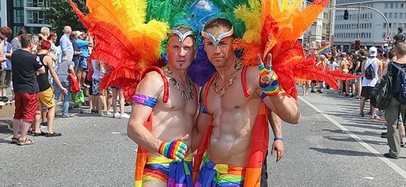 gay homburg