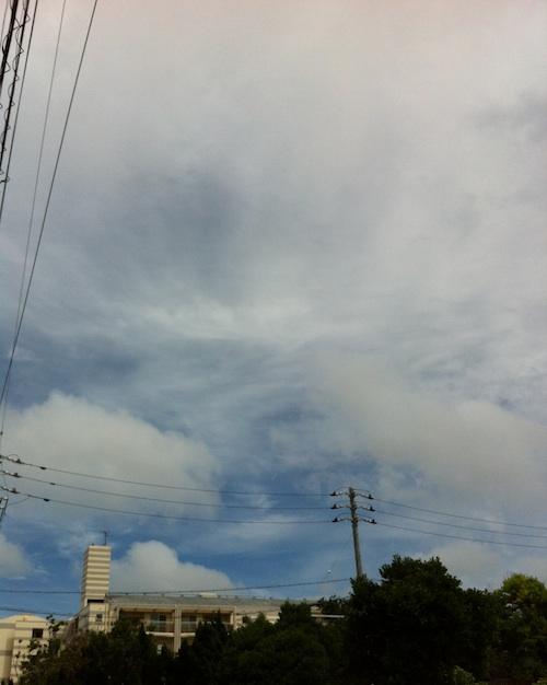 taifu15