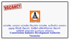 Director, Assistant Director/Deputy Director, Engineering Assistant, Training Officer, District Coordinating Officer - Construction Industry Development Authority