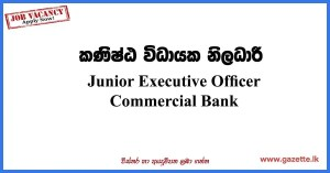 Junior-Executive-Officer