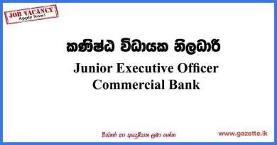 Junior-Executive-Officer