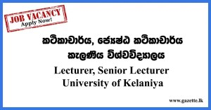Lecturer,-Senior-Lecturer---University-of-Kelaniya