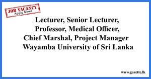 Lecturer,-Senior-Lecturer,