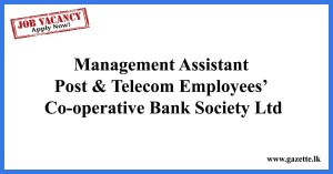 Management-Assistant