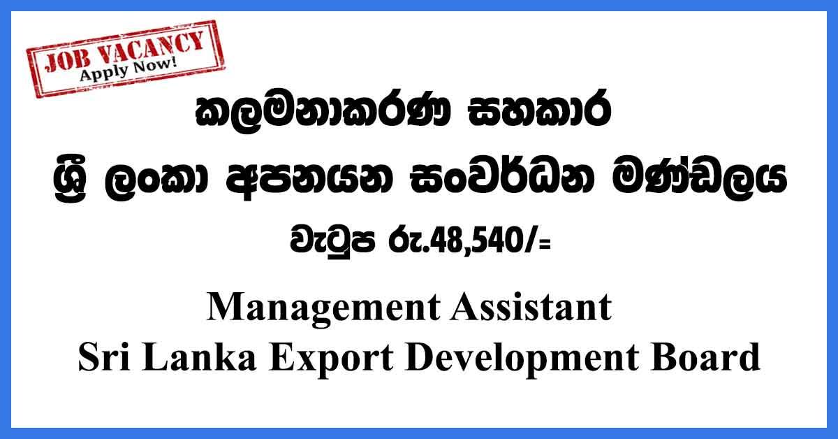 Management-Assistant--Export-Dev