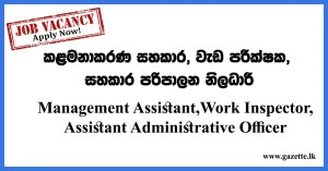 Management-Assistant,Work-Inspector,Assistant-Administrative-Officer
