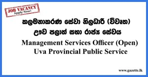 Management-Services-Officer-(Open)