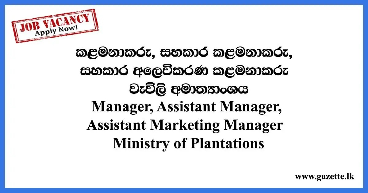 Manager, Assistant Manager, Assistant Marketing Manager – Ministry of Plantations